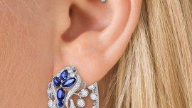 Urechi despicate